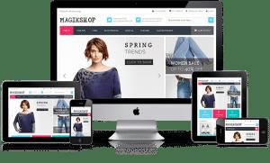 tienda online profesional